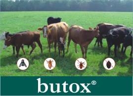 Click on image to visit  Butox product information page